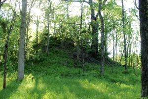 Menard Mounds1 4-24