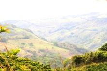 *Landscape 052919 Guanacaste-Cafeteria Horizonte