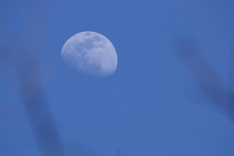 Moon2 031619.JPG